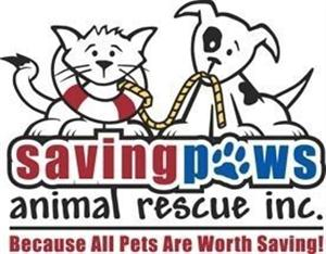 Weidert Group Selects Saving Paws Animal Rescue as its Hero