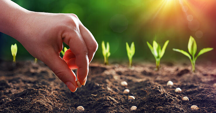 Elements of a Successful Lead Nurturing Campaign