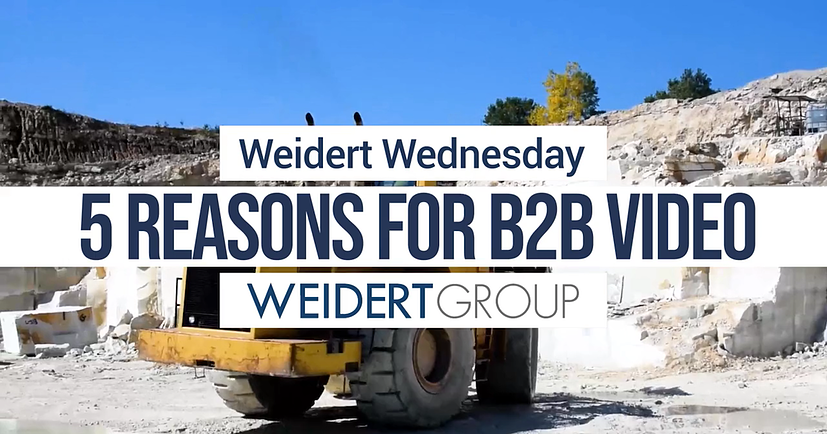 WW-reasons-for-b2b-video-alex