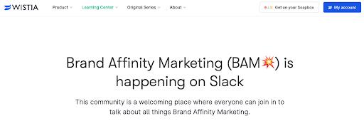Wistia brand affinity marketing community for professional networking