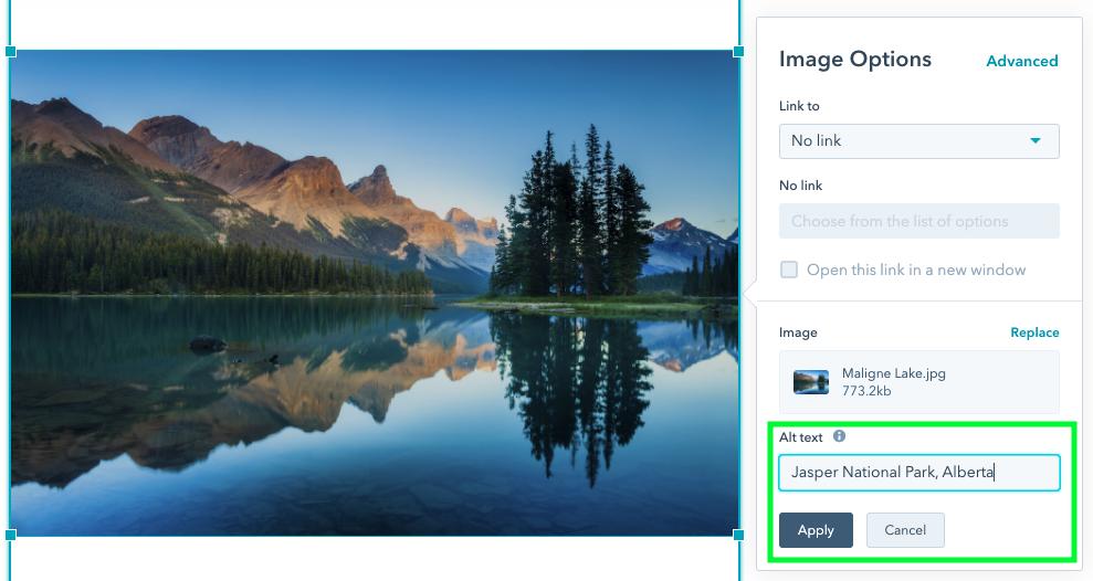 adding image alt text in HubSpot CMS