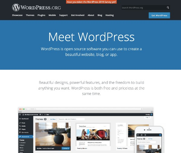 WordPress CMS pros_cons